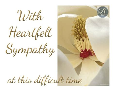 microsoft office sympathy card templates heartfelt sympathy sympathy card printable instant