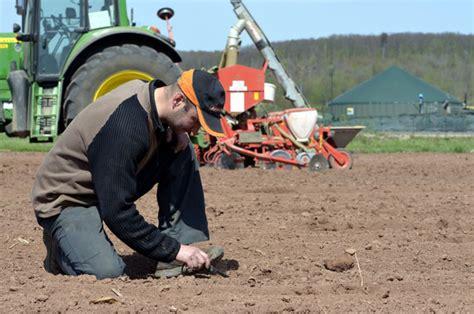 auf was achten bei wohnungsübergabe bei mais auf versorgung mit n 228 hrstoffen achten pflanzenbau
