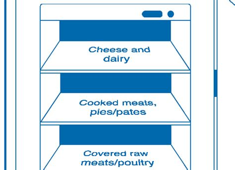 fridge layout guide food hygiene resouces page esky e learning