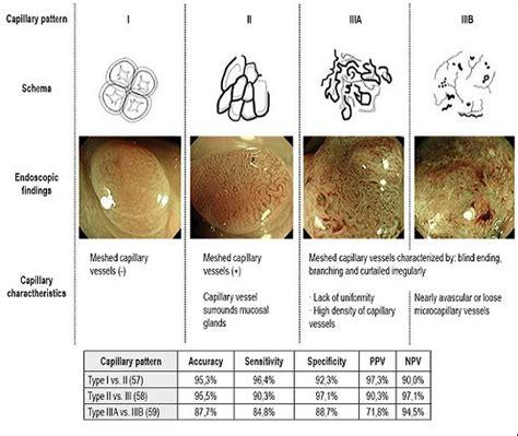 pit pattern classification in colonoscopy diagn 243 stico de las lesiones neopl 225 sicas y no neopl 225 sicas y
