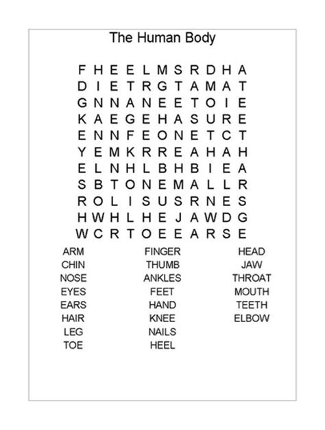 Circulatory System Word Search Printable