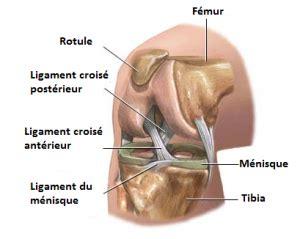 lésion partielle du ligament croisé antérieur : est on