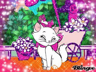 imágenes de kitty la gatita la gatita marie fotograf 237 a 125767418 blingee com