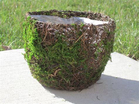 Twig Planters by Moss And Twig Basket Or Planter