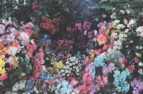 tumblr themes free indie indie wallpapers wallpapersafari