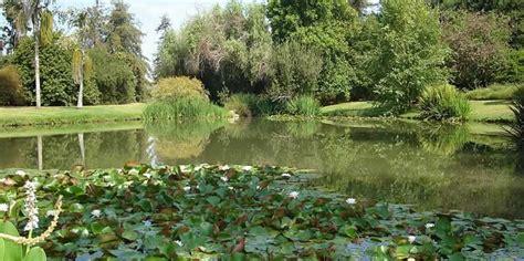 Fullerton Botanical Gardens Fullerton Botanical Garden File Arboretum 023 Jpg Wikimedia Commons Fullerton Arboretum