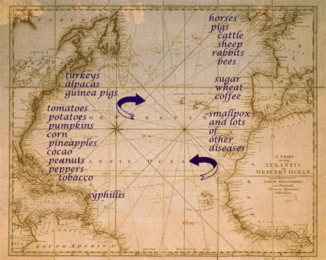 columbian exchange map columbian exchange map blank images