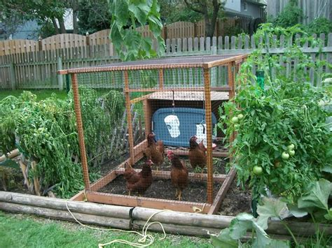 Backyard Veggie Garden by Bloombety Backyard Vegetable Garden Ideas Backyard