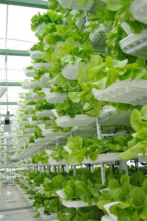Vertical farming   Wikipedia