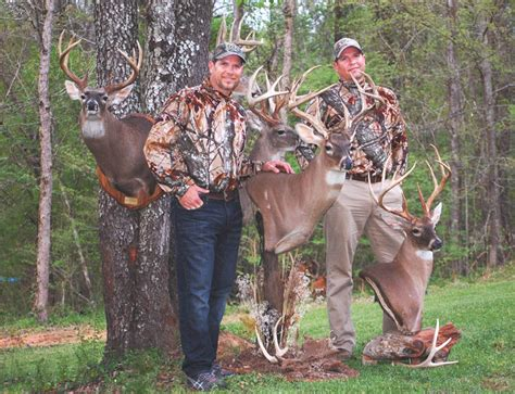 how to a to hunt small how to hunt small acreages in town week 2 day 2 bowhunting net