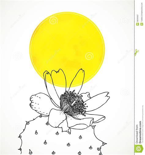 ard avec le dessin botanique de la fleur de cactus