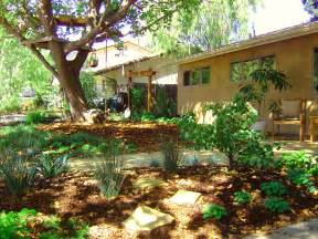 Backyard Landscaping Ideas For Dogs What Does A Water Wise Drought Tolerant Yard Look Like