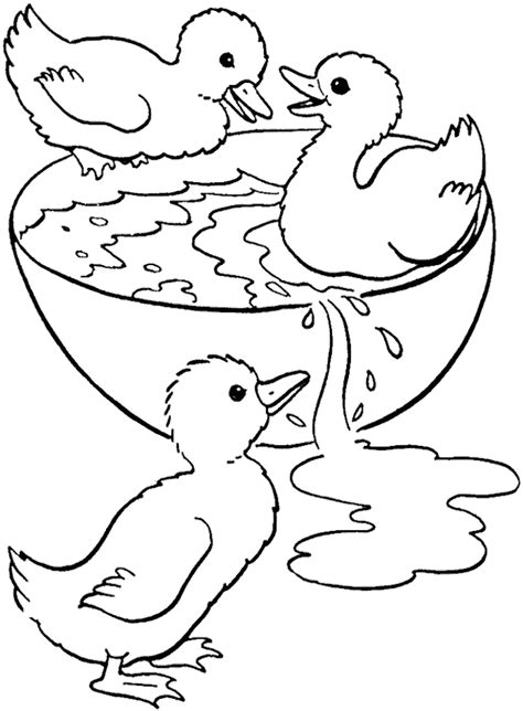 Duck Swimming Coloring Page | swimming coloring page az coloring pages