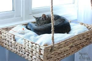 Hometalk diy hanging basket cat perch