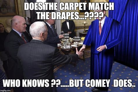 carpets match the drapes image tagged in comey hiding imgflip