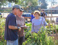 beginning vegetable gardening master gardener