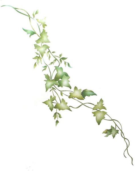 Drawing Vines by Vine With Maple Like Leaves Drawing Zoeken