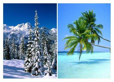 imagenes de invierno y verano inicio invierno verano leticia perinat