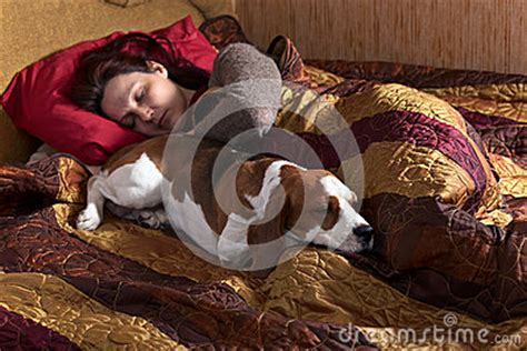 dogs sleeping in bedroom sleeping woman and its dog stock photo image 44461635