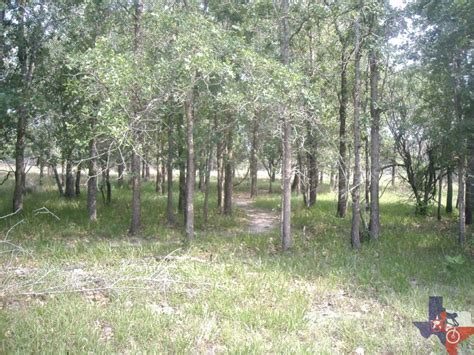 Coleto Creek Park Cabins by Mountainbiketx Trails Gulf Coast Coleto Creek Park