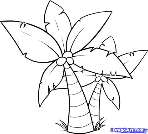 Palm Tree Leaves Outline by Palm Tree Template Az Coloring Pages