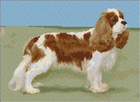 Cavalier King Charles Spaniel - Ann's Cross-Stitch Patterns