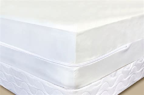 bed bug mattress home bed bug proof box spring protector fulldouble size