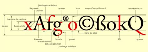 dafont frutiger rocbo typographie anatomie du caract 232 re
