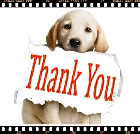 thank you puppy thank you graphic for on