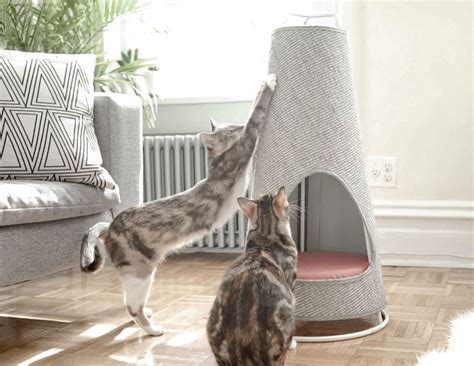 modern scratching post this cone shaped object is both a scratching post and a