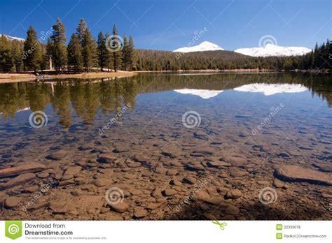 dogs in yosemite lake in yosemite national park royalty free stock photos image 22339018