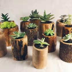 succulent planters 25 best ideas about succulent plants on pinterest