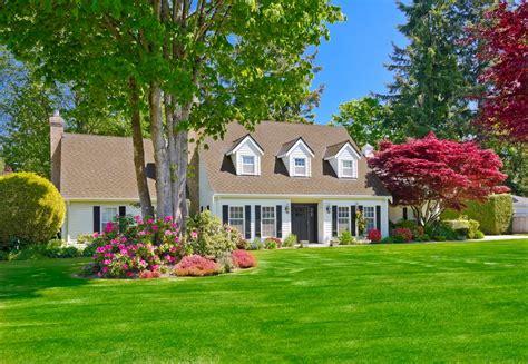 house design turf flower bush tree lawn grass green summer
