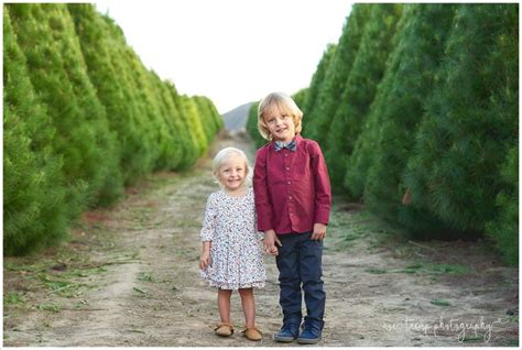 11 best peltzer pines christmas tree farm family photo
