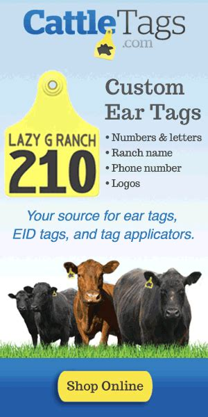 printable ear tags cattle tags electronic id and cattle software