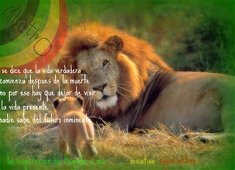 imagenes de leones con frases cristianas frases e imagenes reggae imagenes de misativo