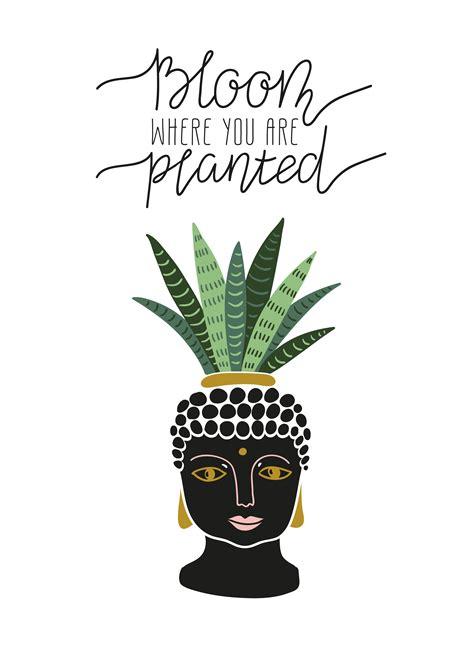 hand drawn tropical house plant   pot  buddha