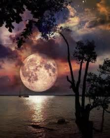 best pics best 25 beautiful moon ideas on beautiful