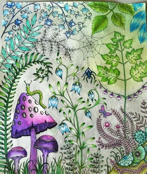 libro a forest 78 ideas about forest drawing on forest