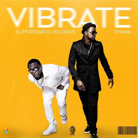 download mp3 dj xclusive cash only download music mp3 dj xclusive ft timaya vibrate