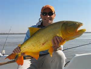 Argentina fishing guides argentina fly fishing patagonia fly fishing