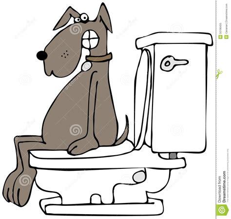 Cox Plans chien sur une toilette illustration stock image 50196455