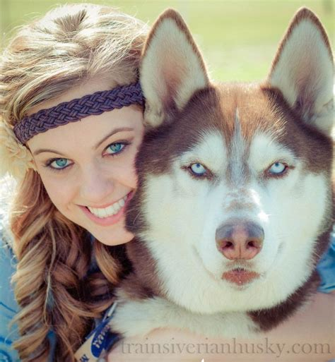 8 Care Tips For A Husky by 17 Best Images About Husky Tips On