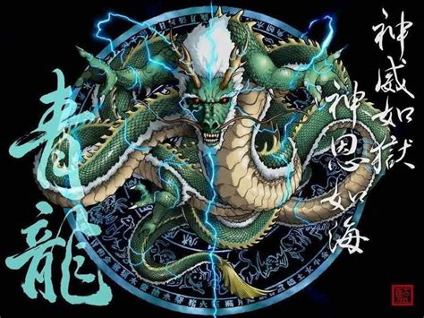 Design This Home Hack Download by Dragons Images Chinese Dragon Hd Wallpaper And Background