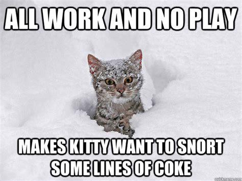 Cat Cocaine Meme - cocaine cat says stop hating cocaine cat quickmeme