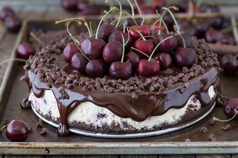 14 dainty cheesecake recipe ideas for a truly sweet gathering