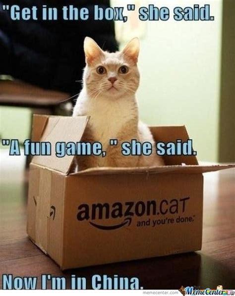meme box cat in a box by kush4life meme center