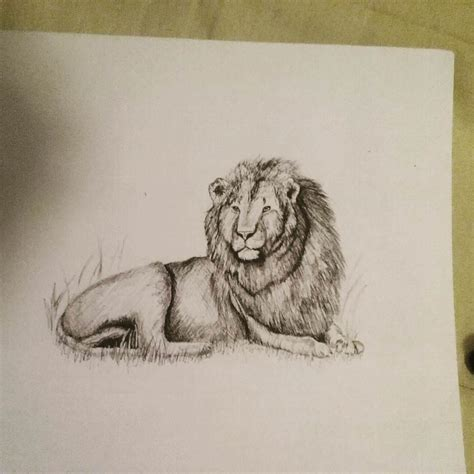 lion drawing art ideas sketches design trends