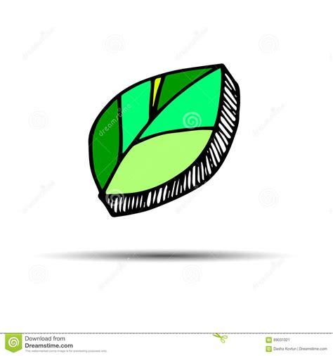 Green Leaf Plant Vector Cartoon Vector Cartoondealer Com 5630335 Eco Ecology Logo Green Leaf Illustration Vector Cartoondealer 28285601