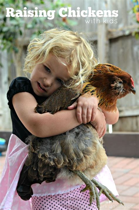 Backyard Chickens San Diego Raising Chickens In San Diego With A Crafty Spoonful